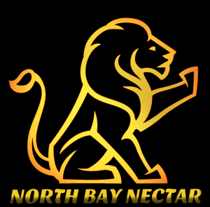 LION LOGO HIGHLIGHT NBN